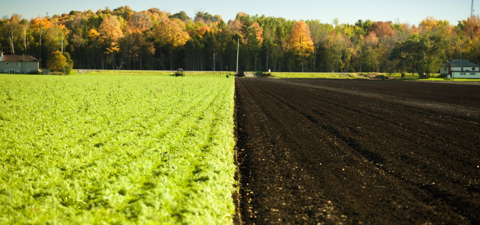 Producers of organic-based fertilizers form European consortium in Brussels