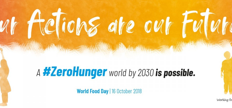 Failure to adopt the draft fertilising products regulation would be an own goal: A World Food Day reminder on the importance of encouraging integrated plant nutrition and soil fertility